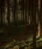 Foresthands